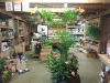 Creative Gardens Landscape Supply and Garden Centre