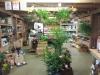 Creative Gardens Landscape Supply and Garden Centre