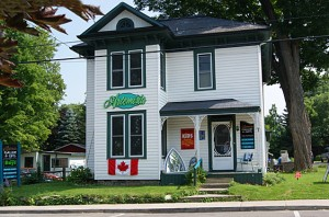 Westport Ontario Artemisia