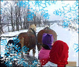 West Winds Ranch Sleigh Rides