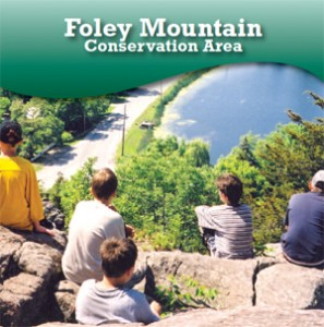 Foley Mountain