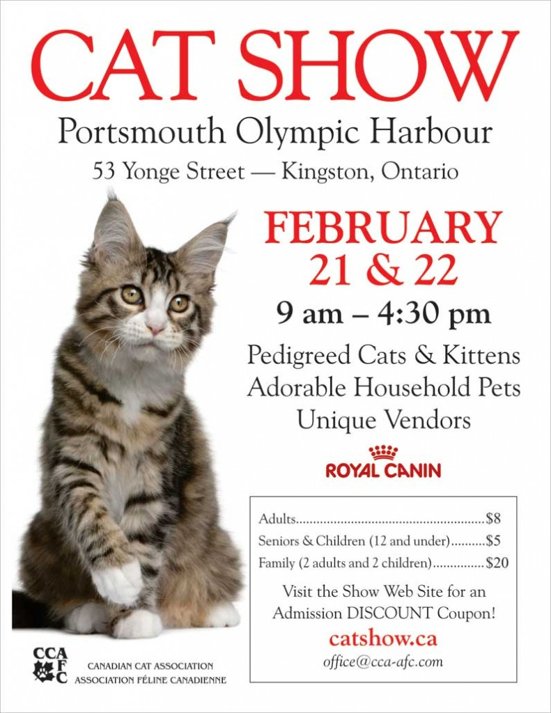 Kingston Cat Show 2014