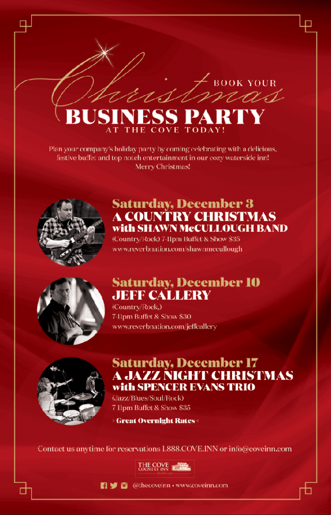 IMG 4 - Christmas Business Party Promo 2016